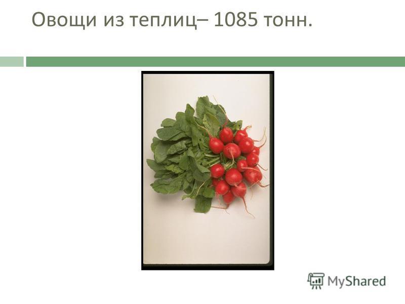 Овощи из теплиц – 1085 тонн.