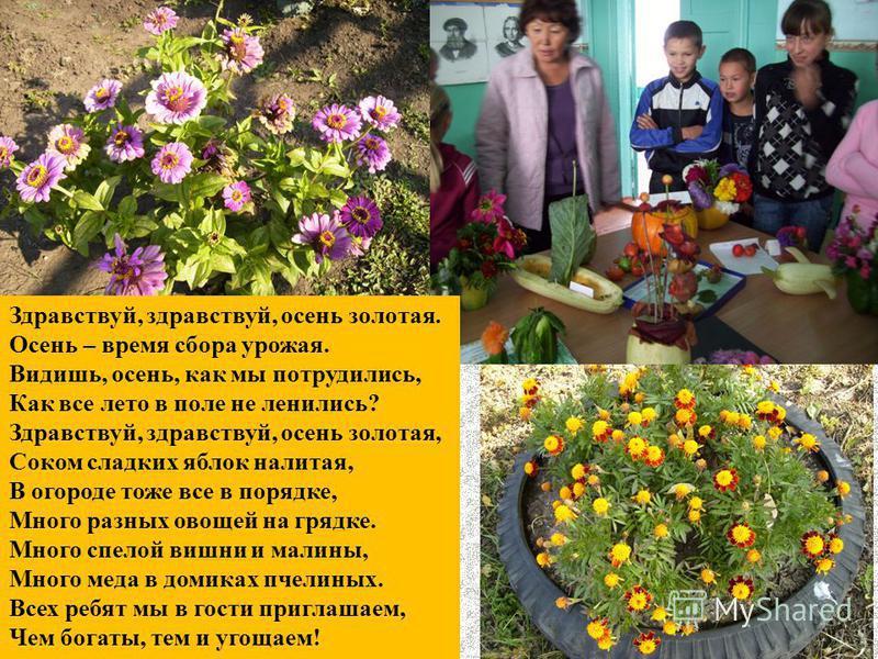 Здравствуй, здравствуй, осень золотая. Осень – время сбора урожая. Видишь, осень, как мы потрудились, Как все лето в поле не ленились? Здравствуй, здравствуй, осень золотая, Соком сладких яблок налитая, В огороде тоже все в порядке, Много разных овощ