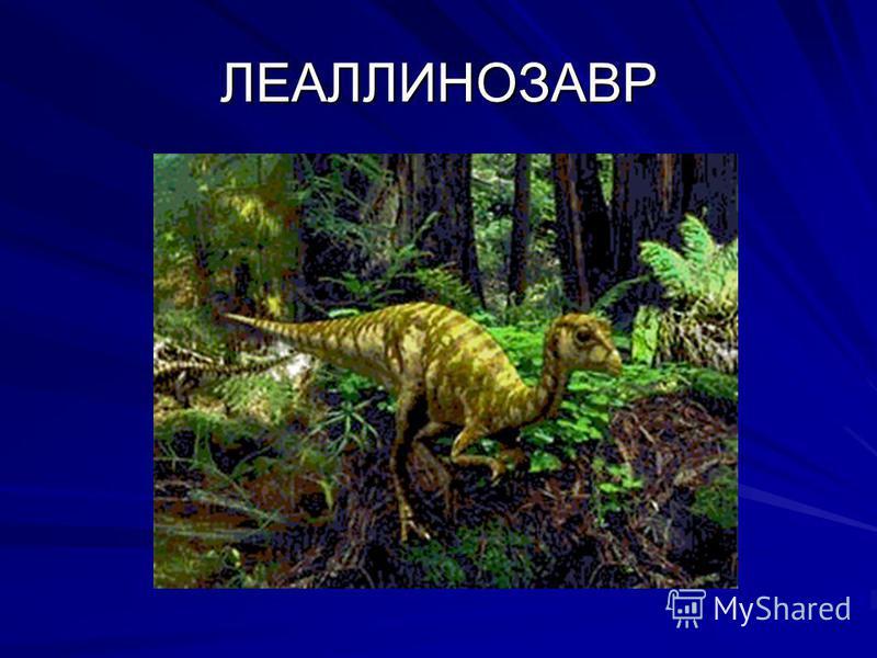 ЛЕАЛЛИНОЗАВР