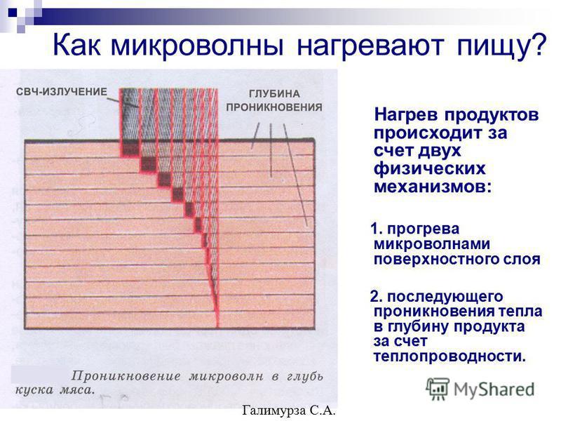 Как микроволны нагревают пищу? Нагрев продуктов происходит за счет двух физических механизмов: 1. прогрева микроволнами поверхностного слоя 2. последующего проникновения тепла в глубину продукта за счет теплопроводности. Галимурза С.А.