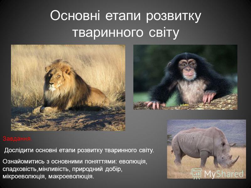 Основні етапи розвитку тваринного світу Завдання. Дослідити основні етапи розвитку тваринного світу. Ознайомитись з основними поняттями: еволюція, спадковість,мінливість, природний добір, мікроеволюція, макроеволюція.