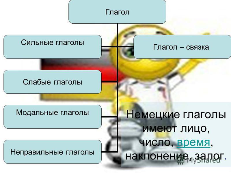 Глагол Слабые глаголы Модальные глаголы Неправильные глаголы Сильные глаголы Глагол – связка Немецкие глаголы имеют лицо, число, время, наклонение, залог.время