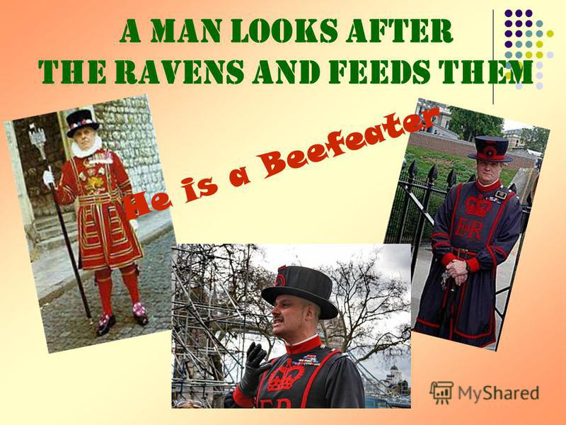 A man looks after the ravens and feeds them He is a Beefeater
