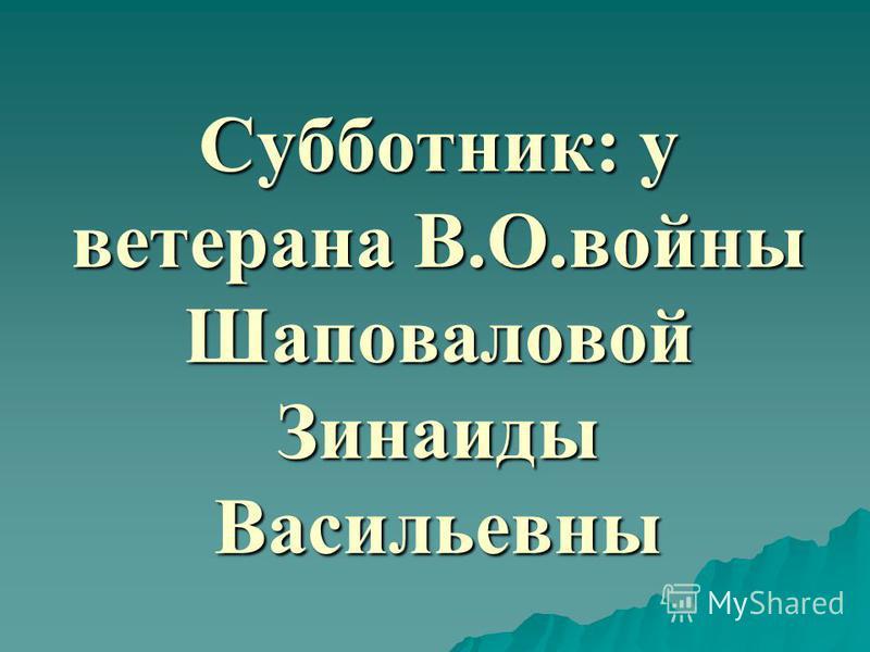 Субботник: у ветерана В.О.войны Шаповаловой Зинаиды Васильевны