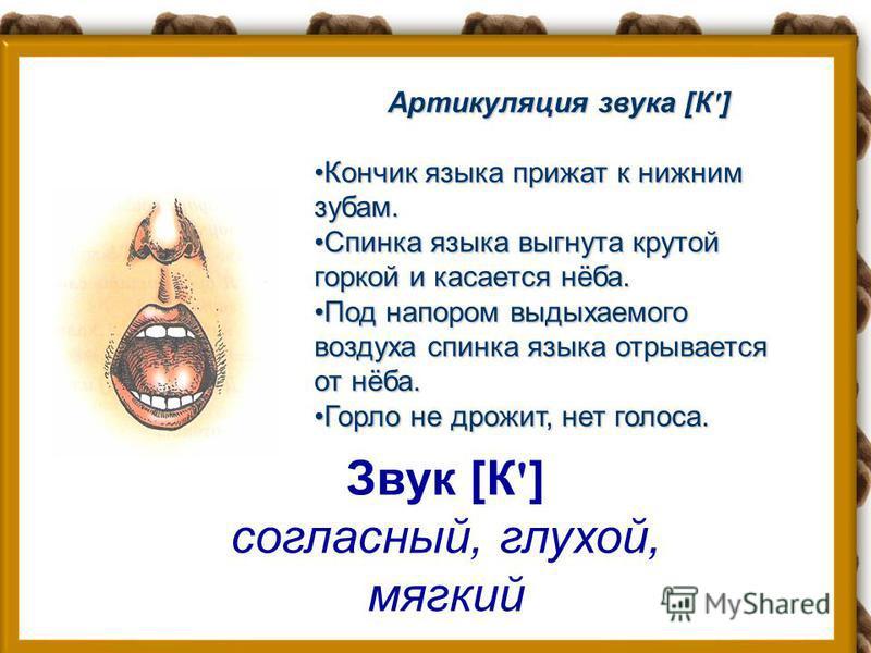 Звук [К] согласный, глухой, твёрдый Артикуляция звука [К] Кончик языка слегка отходит от нижних зубов.Кончик языка слегка отходит от нижних зубов. Спинка языка выгнута крутой горкой и касается нёба.Спинка языка выгнута крутой горкой и касается нёба.