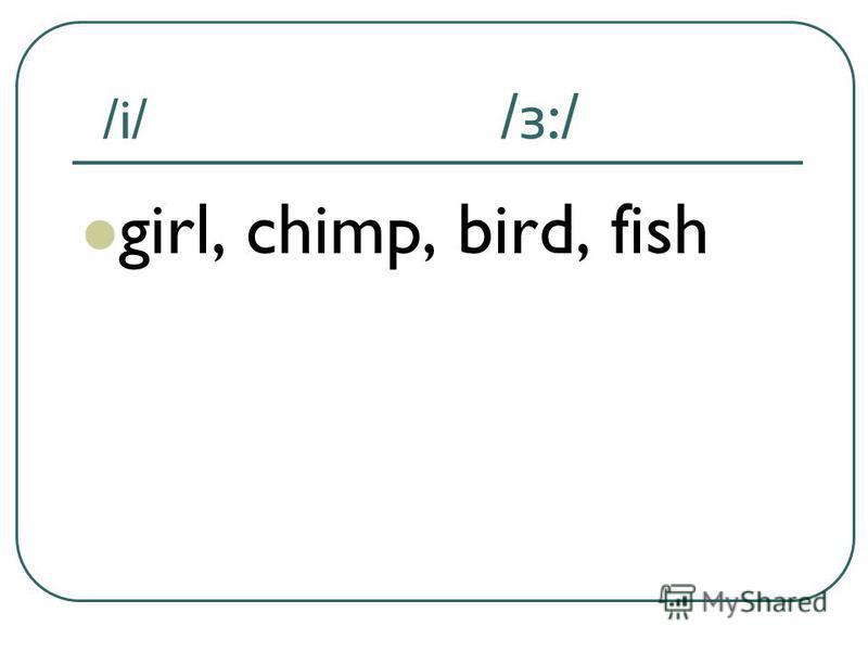 /i/ / з :/ girl, chimp, bird, fish