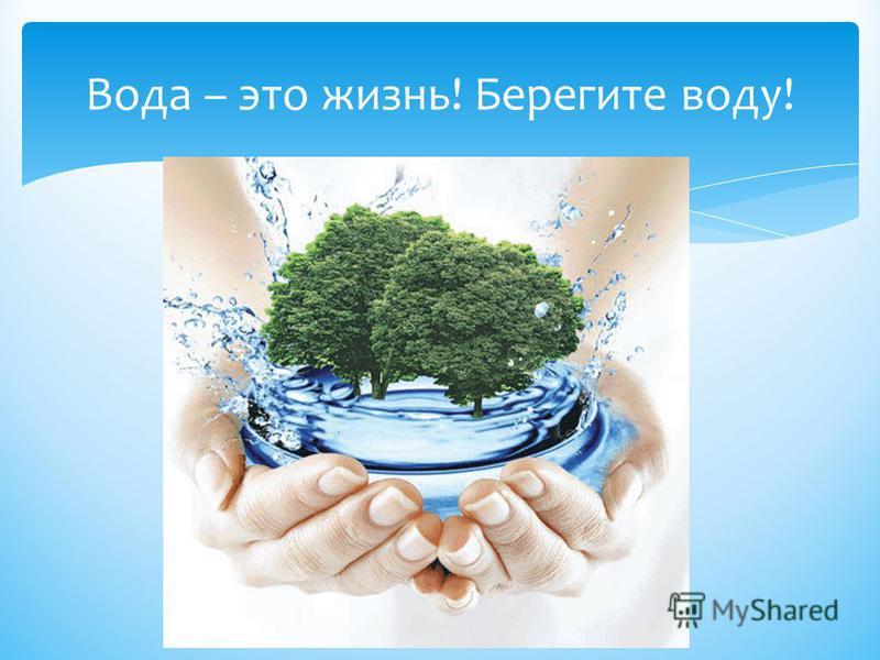 Вода – это жизнь! Берегите воду!