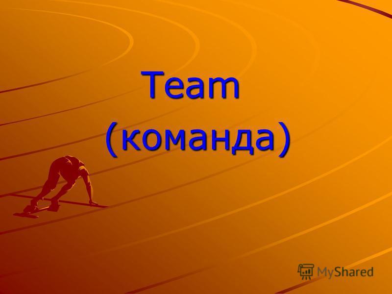 Team Team (команда) (команда)