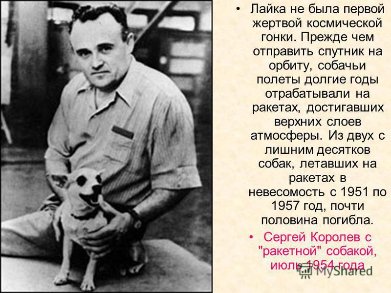 Лайка не была первой жертвой космической гонки. Прежде чем отправить спутник на орбиту, собачьи полеты долгие годы отрабатывали на ракетах, достигавших верхних слоев атмосферы. Из двух с лишним десятков собак, летавших на ракетах в невесомость с 1951