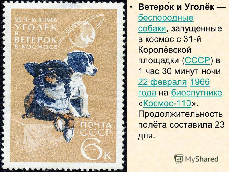 Ветеро́к и Уголёк беспородные собаки, запущенные в космос с 31-й Королёвской площадки (СССР) в 1 час 30 минут ночи 22 февраля 1966 года на биоспутнике «Космос-110». Продолжительность полёта составила 23 дня. беспородные собакиСССР 22 февраля 1966 год