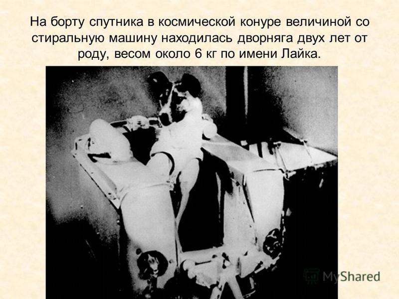 На борту спутника в космической конуре величиной со стиральную машину находилась дворняга двух лет от роду, весом около 6 кг по имени Лайка.