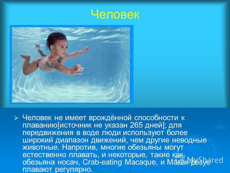 Человек Человек не имеет врождённой способности к плаванию[источник не указан 265 дней]; для передвижения в воде люди используют более широкий диапазон движений, чем другие неводные животные. Напротив, многие обезьяны могут естественно плавать, и нек