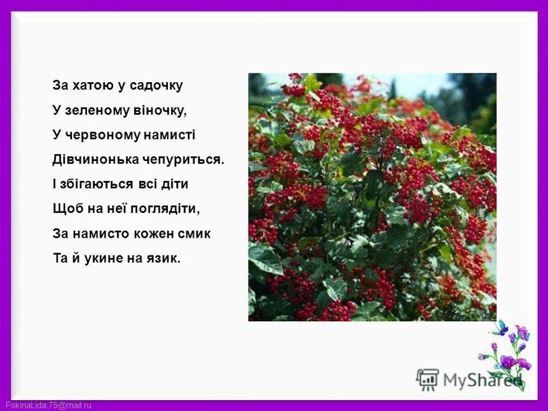FokinaLida.75@mail.ru За хатою у садочку У зеленому віночку, У червоному намисті Дівчинонька чепуриться. І збігаються всі діти Щоб на неї поглядіти, За намисто кожен смик Та й укине на язик.