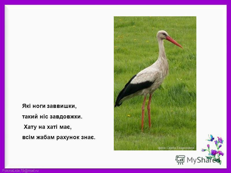 FokinaLida.75@mail.ru Які ноги заввишки, такий ніс завдовжки. Хату на хаті має, всім жабам рахунок знає.