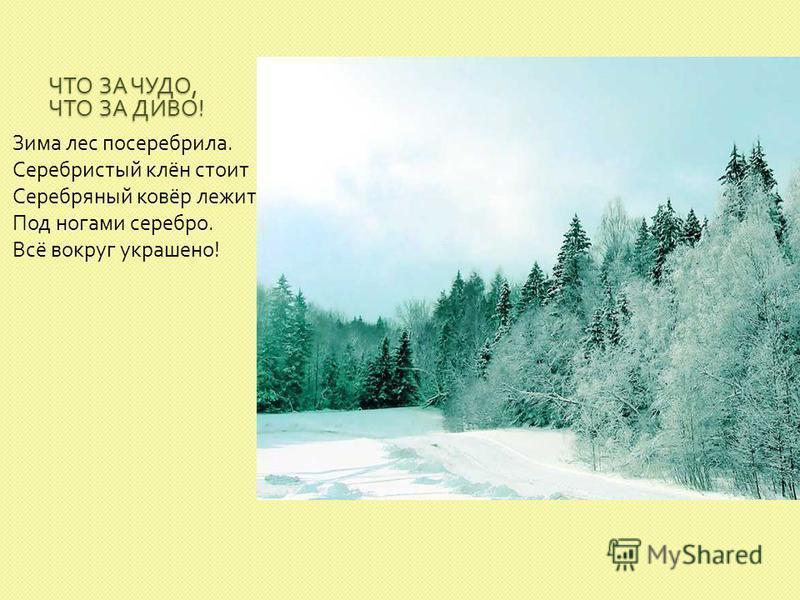ЧТО ЗА ЧУДО, ЧТО ЗА ДИВО ! Зима лес посеребрила. Серебристый клён стоит Серебряный ковёр лежит. Под ногами серебро. Всё вокруг украшено !