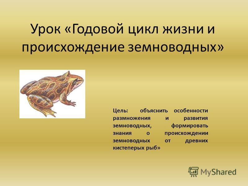 Урок «Годовой цикл жизни и происхождение земноводных» Цель: объяснить особенности размножения и развития земноводных, формировать знания о происхождении земноводных от древних кистеперых рыб»