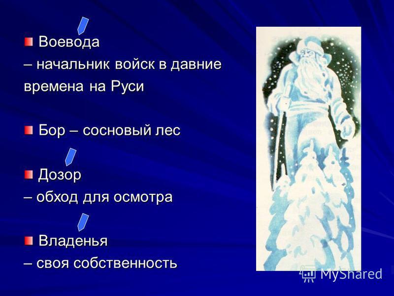 Воевода – начальник войск в давние времена на Руси Бор – сосновый лес Дозор – обход для осмотра Владенья – своя собственность