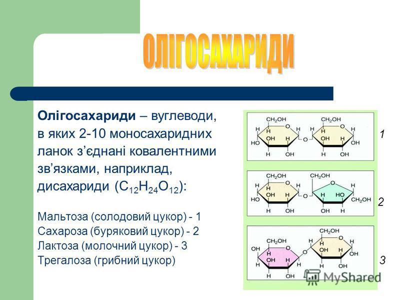 МОНОСАХАРИДИ (С n H 2n O n ) – містять від 3 до 10 атомів вуглецю, солодкі на смак, розчинні уводі: Глюкоза Фруктоза Галактоза Рибоза Дезоксирибоза глюкоза фруктоза