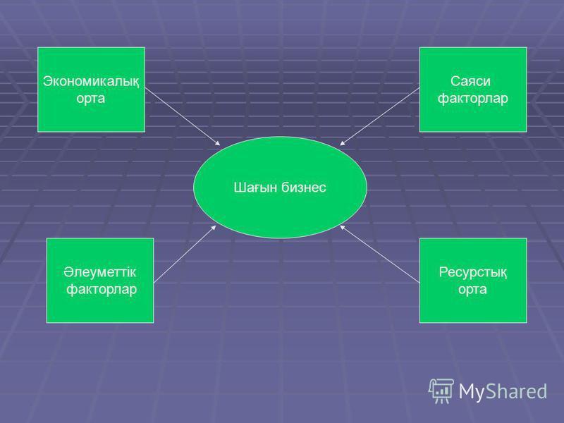 Шағын бизнес Әлеуметтік факторлар Экономикалық орта Саяси факторлар Ресурстық орта
