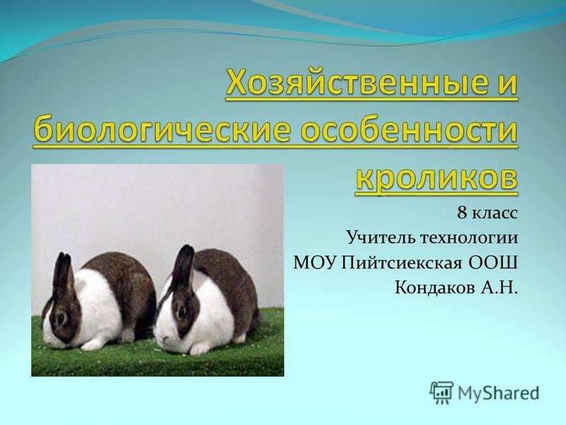 8 класс Учитель технологии МОУ Пийтсиекская ООШ Кондаков А.Н.