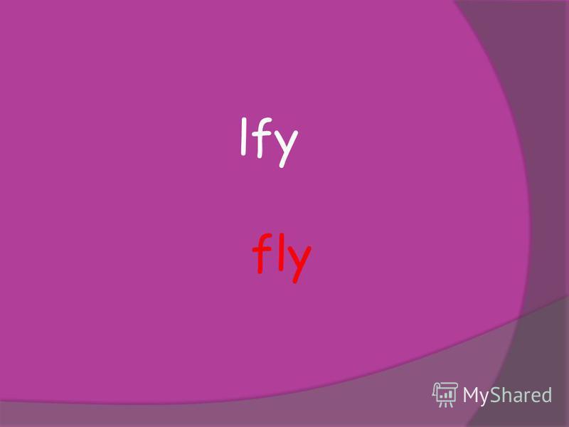 lfy fly