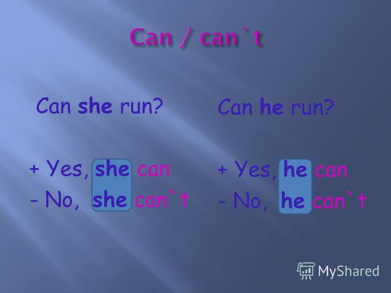 Can she run? + Yes, she can - No, she can`t Can he run? + Yes, he can - No, he can`t