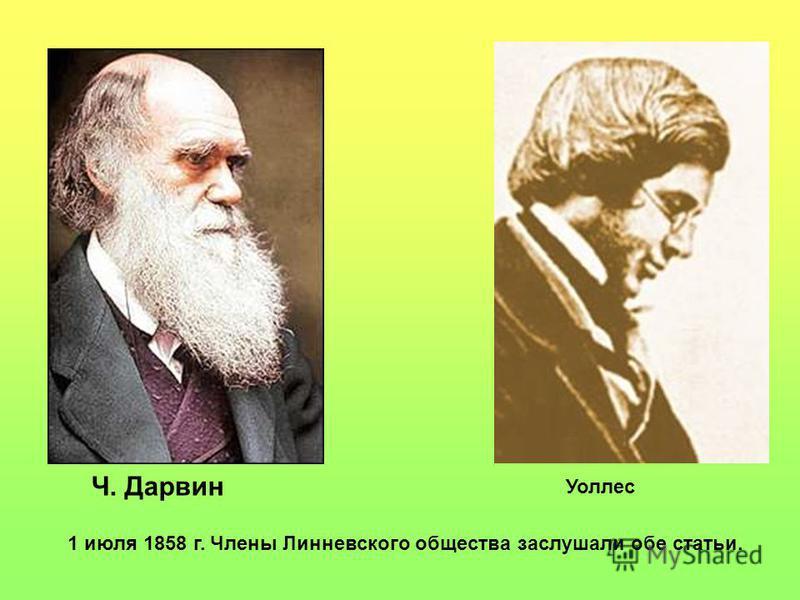 1 июля 1858 г. Члены Линневского общества заслушали обе статьи. Уоллес Ч. Дарвин