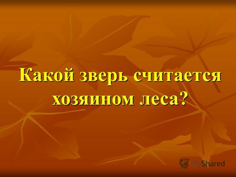 Какой зверь считается хозяином леса?