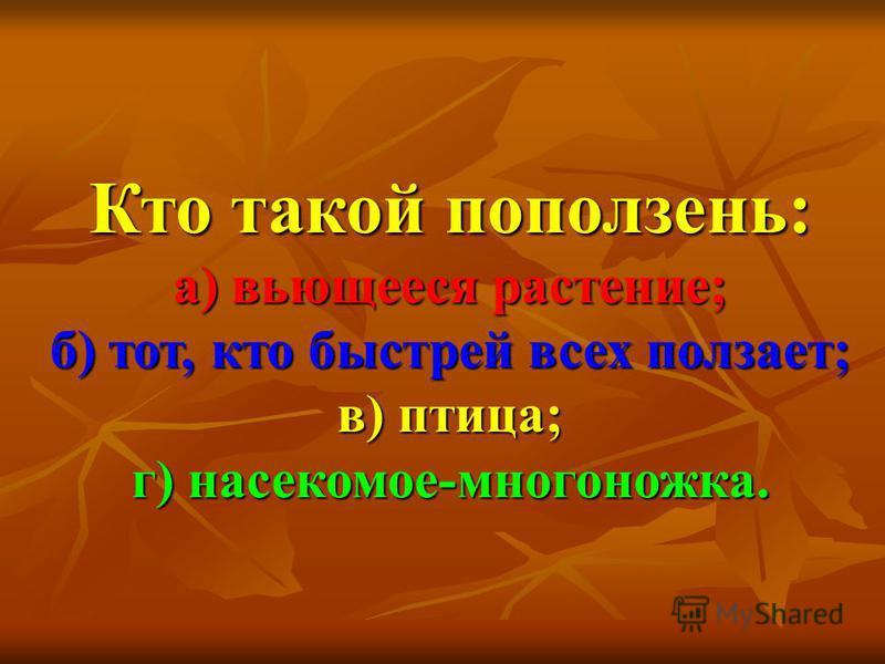 Кто такой поползень: а) вьющееся растение; б) тот, кто быстрей всех ползает; в) птица; г) насекомое-многоножка.