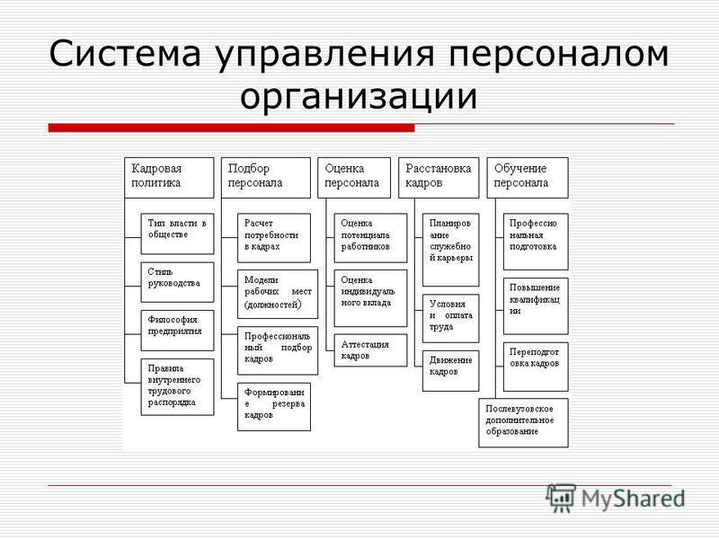 Система управления персоналом организации