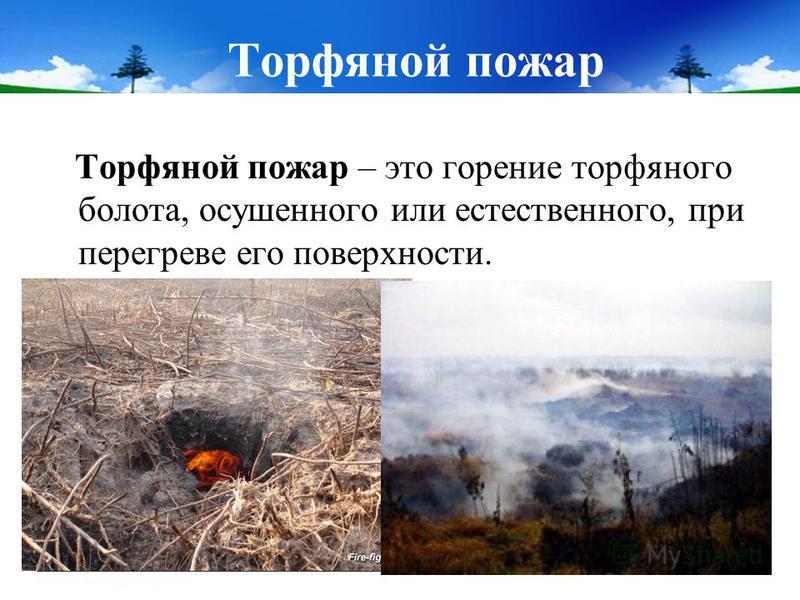 Торфяной пожар Торфяной пожар – это горение торфяного болота, осушенного или естественного, при перегреве его поверхности.