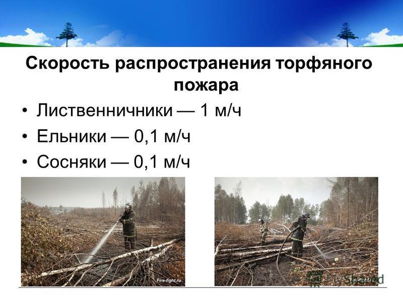 Скорость распространения торфяного пожара Лиственничники 1 м/ч Ельники 0,1 м/ч Сосняки 0,1 м/ч