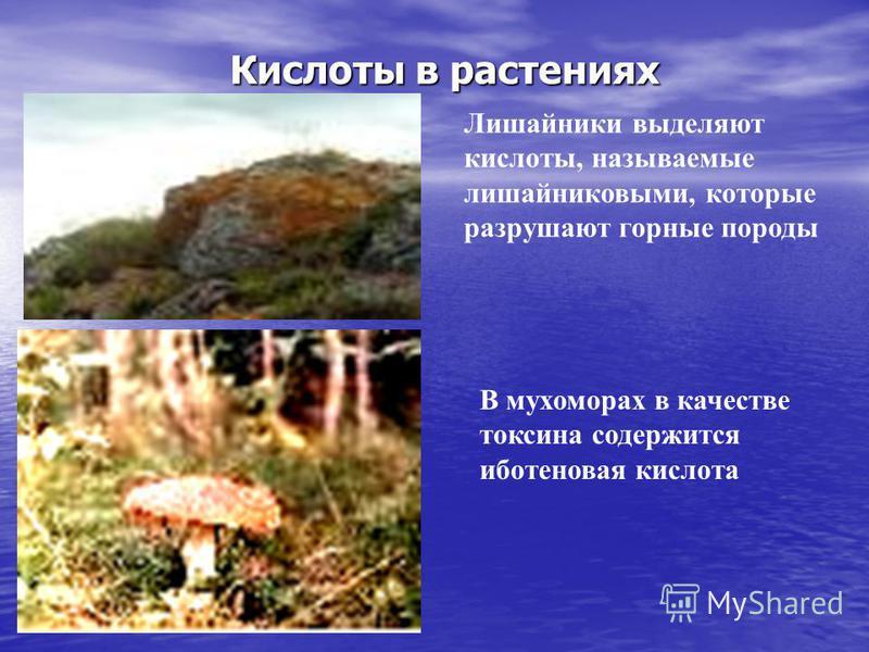 Москва 20026 Кислоты в дождевой воде Углекислый газ при растворении дает раствор слабой угольной кислоты Азотная кислота может находиться в дождевой воде после грозы Сернистый газ, образовавшийся при извержении вулканов и сгорании топлива, окисляясь