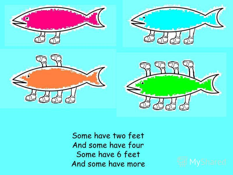 Some have two feet And some have four Some have 6 feet And some have more