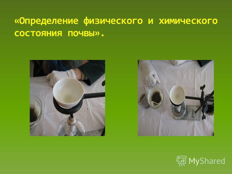 «Определение физического и химического состояния почвы».