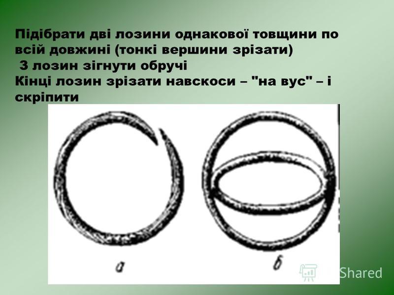 Підібрати дві лозини однакової товщини по всій довжині (тонкі вершини зрізати) З лозин зігнути обручі Кінці лозин зрізати навскоси – на вус – і скріпити