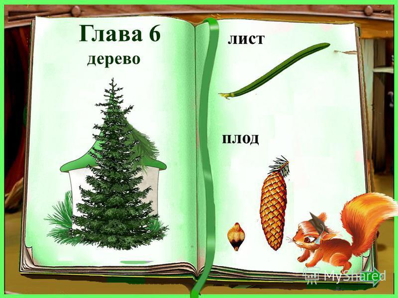 дерево лист плод рябина рябиновый ягодка