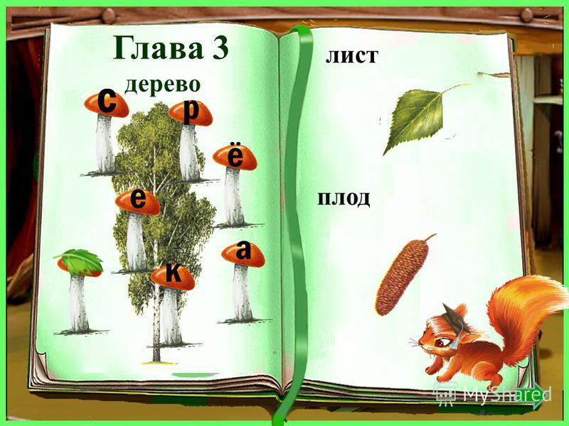 дерево лист плод клён кленовый крылатка