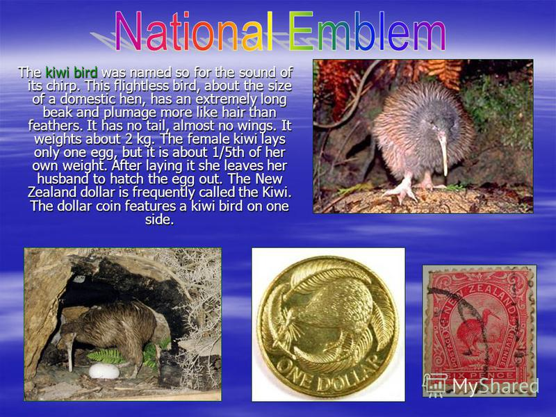 Until 1911, New Zealand used the same national coat of arms as the United Kingdom. When New Zealand became a Dominion in 1907, it was decided that a new Coat of Arms was required, and a design competition was held. Since being granted its own arms in