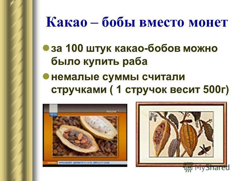 Какао – бобы вместо монет за 100 штук какао-бобов можно было купить раба немалые суммы считали стручками ( 1 стручок весит 500 г)