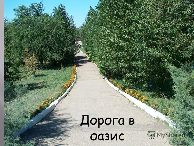 Районный парк отдыха