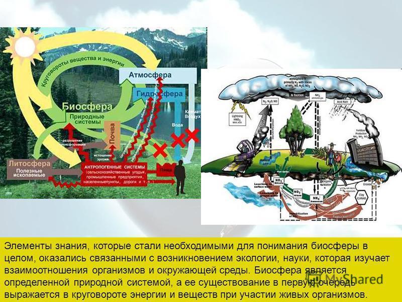 Элементы знания, которые стали необходимыми для понимания биосферы в целом, оказались связанными с возникновением экологии, науки, которая изучает взаимоотношения организмов и окружающей среды. Биосфера является определенной природной системой, а ее