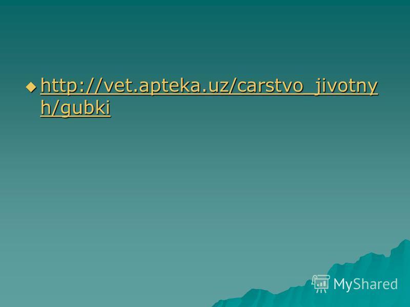 http://vet.apteka.uz/carstvo_jivotny h/gubki http://vet.apteka.uz/carstvo_jivotny h/gubki http://vet.apteka.uz/carstvo_jivotny h/gubki http://vet.apteka.uz/carstvo_jivotny h/gubki