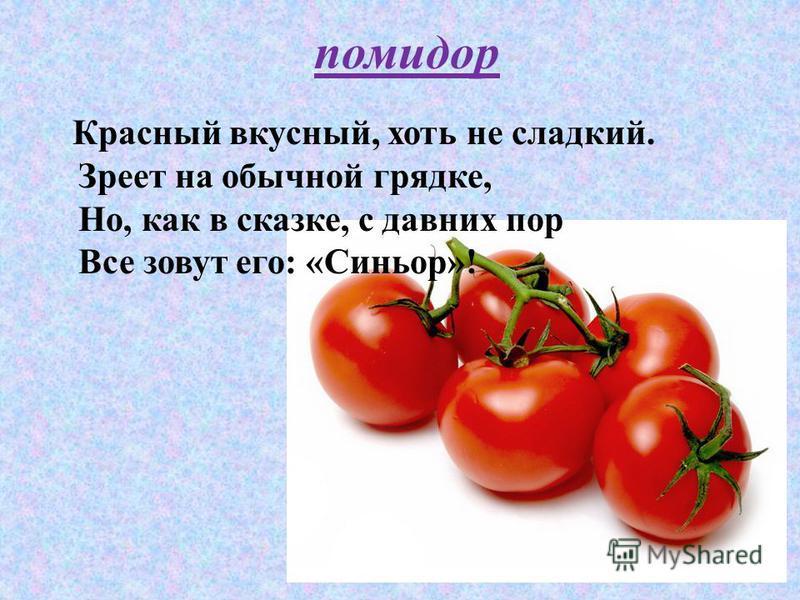 Красный вкусный, хоть не сладкий. Зреет на обычной грядке, Но, как в сказке, с давних пор Все зовут его: «Синьор»! помидор