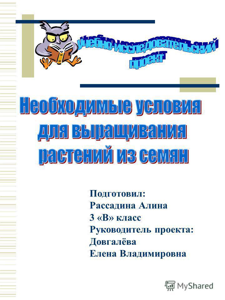 Подготовил: Рассадина Алина 3 «В» класс Руководитель проекта: Довгалёва Елена Владимировна