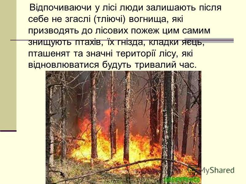 Відпочиваючи у лісі люди залишають після себе не згаслі (тліючі) вогнища, які призводять до лісових пожеж цим самим знищують птахів, їх гнізда, кладки яєць, пташенят та значні території лісу, які відновлюватися будуть тривалий час.
