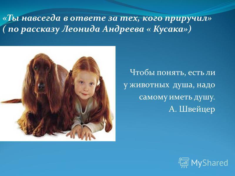 Чтобы понять, есть ли животных у животных душа, надо самому иметь душу. А. Швейцер «Ты навсегда в ответе за тех, кого приручил» ( по рассказу Леонида Андреева « Кусака»)