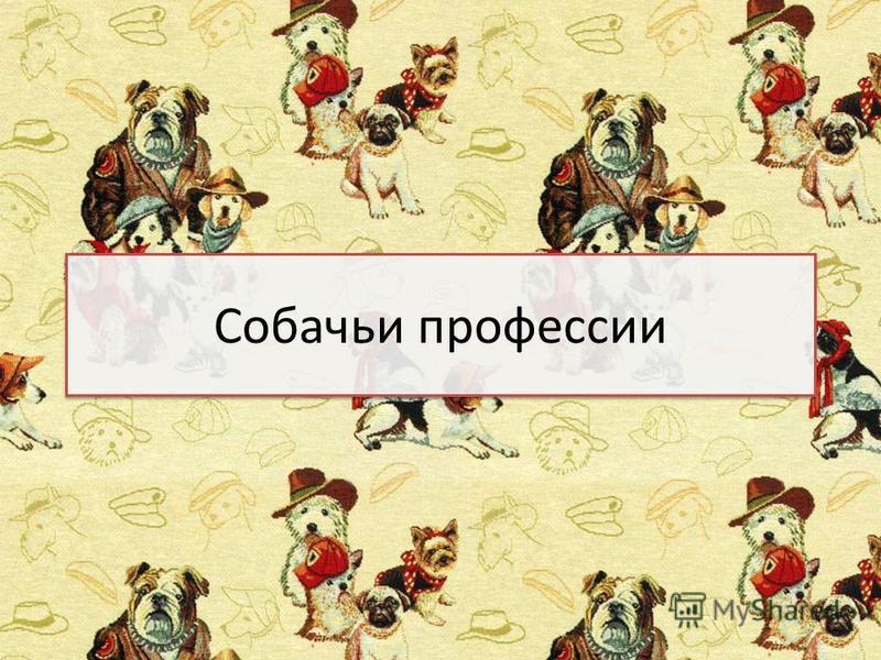 Собачьи профессии