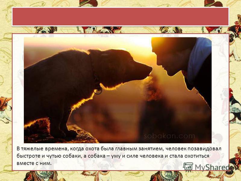 В тяжелые времена, когда охота была главным занятием, человек позавидовал быстроте и чутью собаки, а собака – уму и силе человека и стала охотиться вместе с ним.