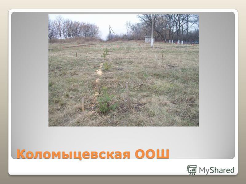 Коломыцевская ООШ